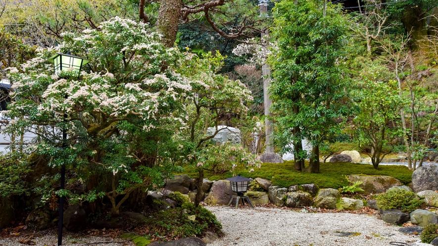 【*庭園】緑を眺めて心休まるひととき。