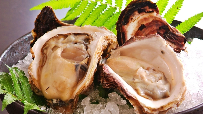 【春夏イチオシ選定】大きな岩牡蠣の刺身/濃厚焼き × トロ箱盛り海鮮炭火焼き はしうど最旬コース