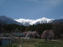 駒ヶ根高原 春