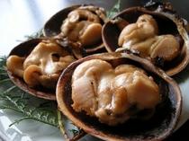 [大アサリ焼き]厚い貝の身を、醤油とお酒でシンプルに焼く