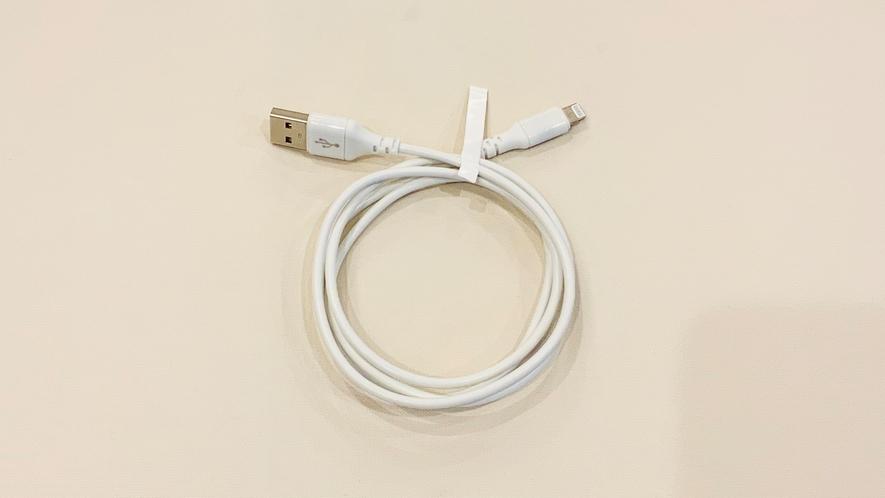 充電ケーブル(貸出用)