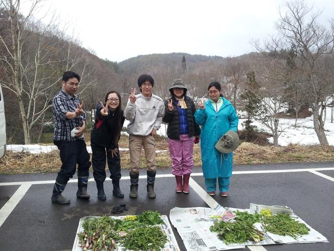 山菜狩り収穫2