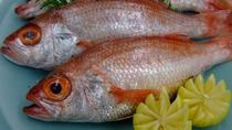 幻の高級魚「のどぐろ」