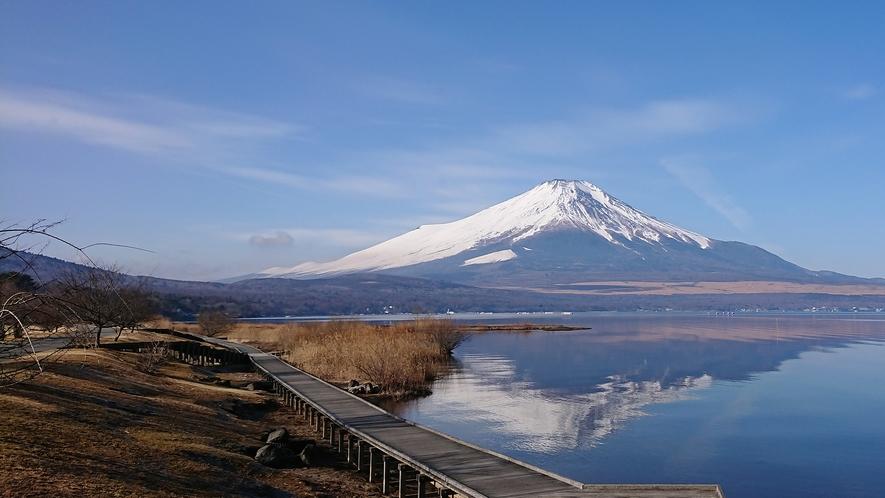 山中湖交流プラザ「きらら」当館より車で約10分。「きらら」から見た富士山。