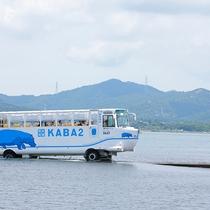 水陸両用バス「KABA」
