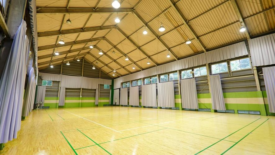 体育館。広さと高さを備えた、スポーツはもちろんレクリエーション、講演会場などにどうぞ(有料)