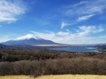 パノラマ台から望む富士山