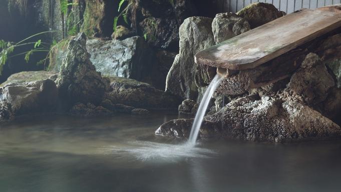 【秋冬旅セール】【2食付】リーズナブルに滞在するなら当プランで決まり!源泉掛け流し温泉で肌つるつる!