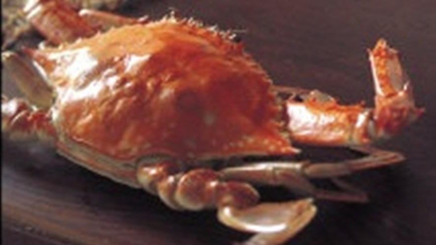 *夏~秋が旬の渡り蟹。凝縮された旨味が絶品です。