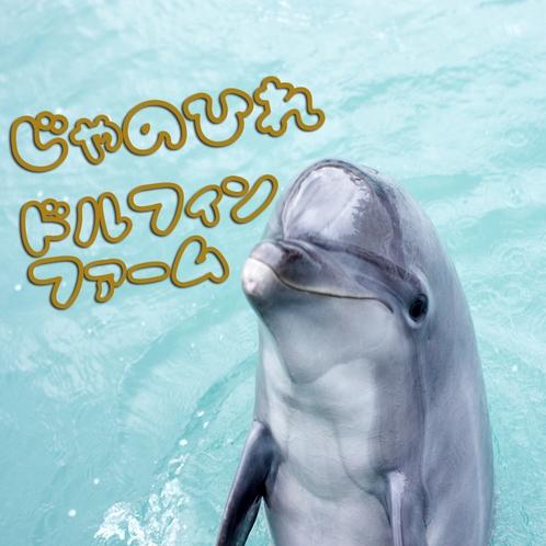 じゃのひれドルフィンファーム〈br〉可愛いイルカに触れ合えますよ♪