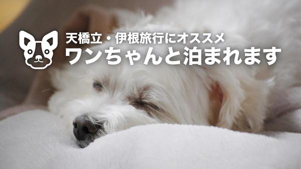 ワンちゃんと泊まれる和室6畳(1〜2名様)【ペット可】