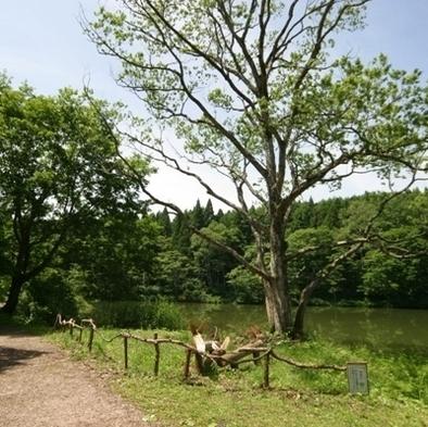 【素泊り】大自然 新緑の黒姫高原で過ごそう♪最終チェックイン 21時まで可能!1泊素泊り