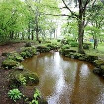 自然の中の釣堀