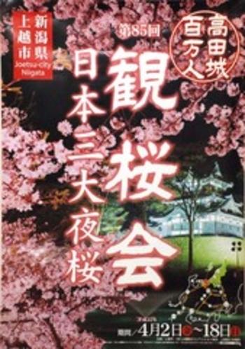 観桜会パンフ
