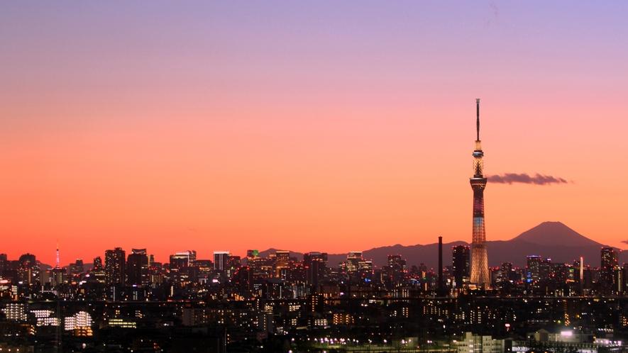 <周辺>東京スカイツリー(電車約20分)