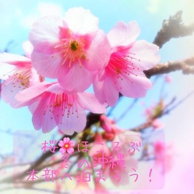 【2022年】沖縄『さくら』の季節をスーパー先取り 本部さくらプラン(素泊り)
