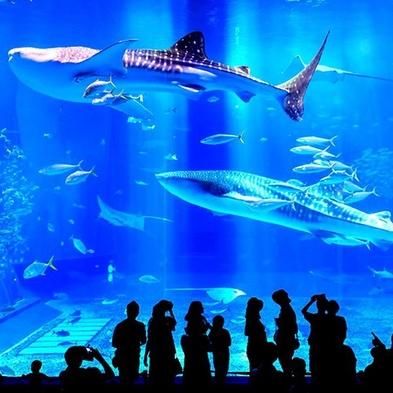 【美ら海水族館チケット】本部へ泊まろう!森のリゾートステイ(素泊り)
