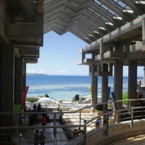 ◇美ら海水族館は目の前が海です!