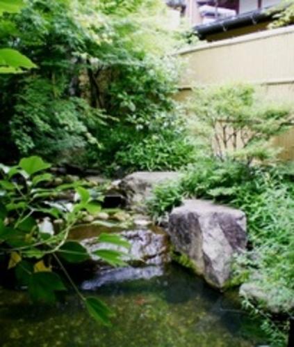 せせらぎの湯前庭新緑