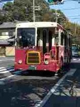市内循環バス バンビーナ号