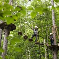 森の中をスイスイ空中散歩。アドベンチャーパーク「ムササビ」
