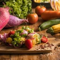 新鮮な野菜をサラダに。様々なドレッシングをご用意しております。