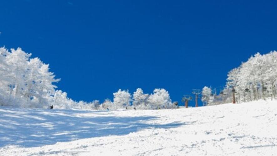 **【菅平高原スキー場:パインビークエリア】地域最大級のキッズパークや初心者コースが充実!