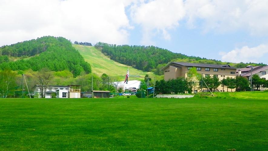 *【周辺/グリーン期】天然芝と人工芝のグラウンドも所有しています。