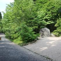 【岡山県立森林公園】