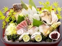 恵みの幸 瀬戸内海の活魚
