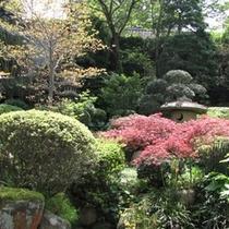 【 日本庭園 】お部屋や館内から眺める庭園は、四季折々の美しさが御座います