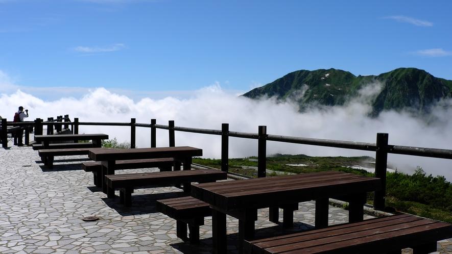 *【景色】テラスから見える雲海