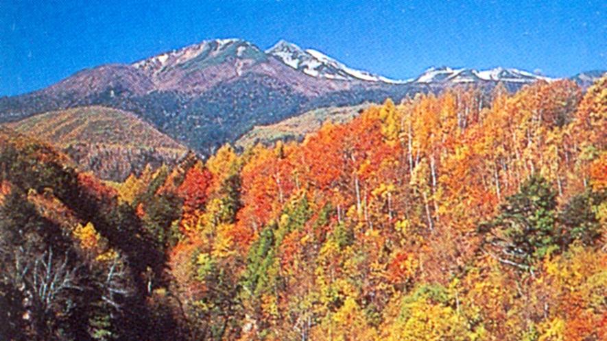 *晩秋の乗鞍の紅葉・美しい青空とのコントラストは必見です!