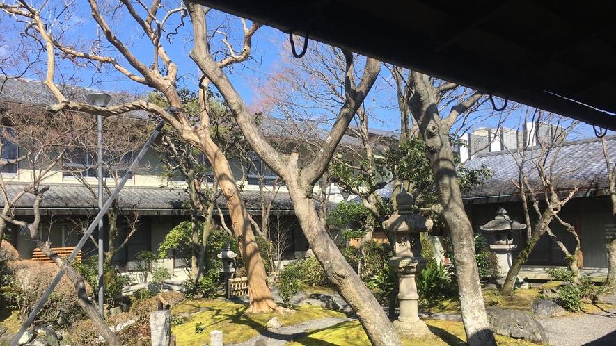 施設内の日本庭園です