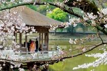 奈良公園 浮御堂 イメージ