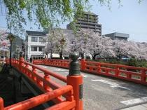 春 花見橋