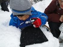 ルーペを使って雪の結晶を観察