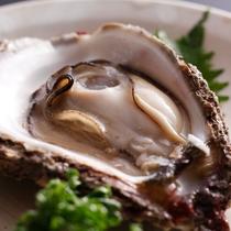 夏のグルメ食材「岩牡蠣」/例