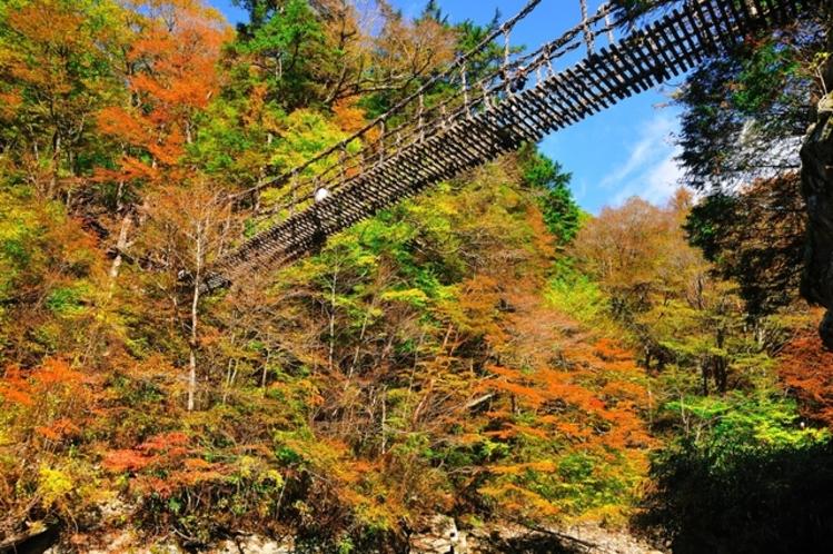 徳島の秘境、祖谷のかずら橋