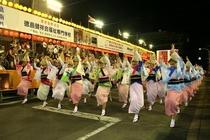 日本三大盆踊り「阿波踊り」