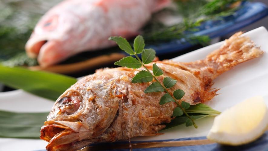 高級魚とも呼ばれる「のどぐろ」