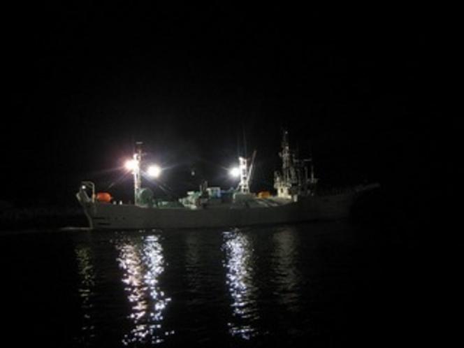 かに漁船出漁4