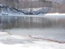 冬の羽鳥湖