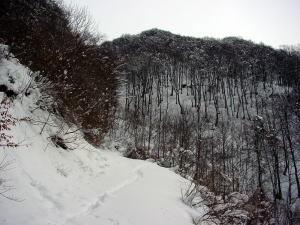 山頂沢コ−ス
