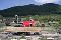 鷹山ファミリー牧場