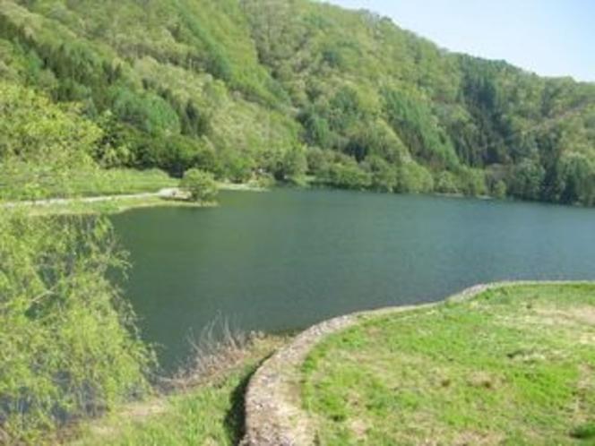 夏の中綱湖2