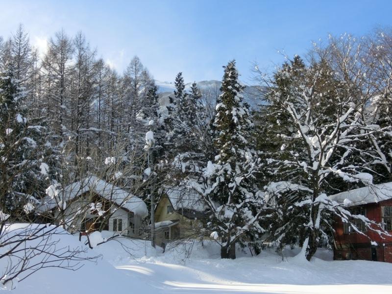 雪がやんだ朝