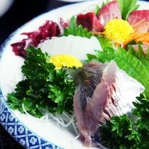 伊豆で水揚げされた旬魚のお刺身