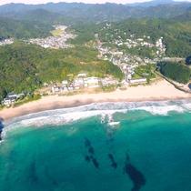 エメラルドグリーンが美しい『入田浜』澄んだ海の色が眩しい!