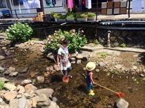 又五郎の前の川夏は手長エビや小アユ取りで楽しめます